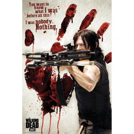 Plakát The Walking Dead Daryl 253