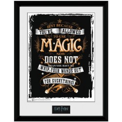 Harry Potter Picture Magic 16 x 12