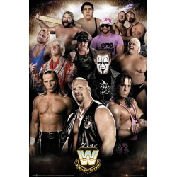 WWE Poster Legends 294