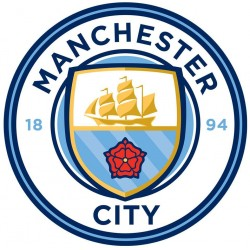 Manchester City F.C. Large Crest Sticker